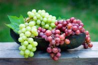 ایجاد سنگ کلیه با افراط در مصرف انگور